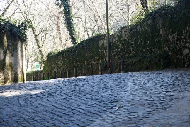 Cobblestones road - free stock photo