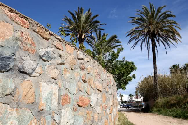 A stone wall and palms - free stock photo